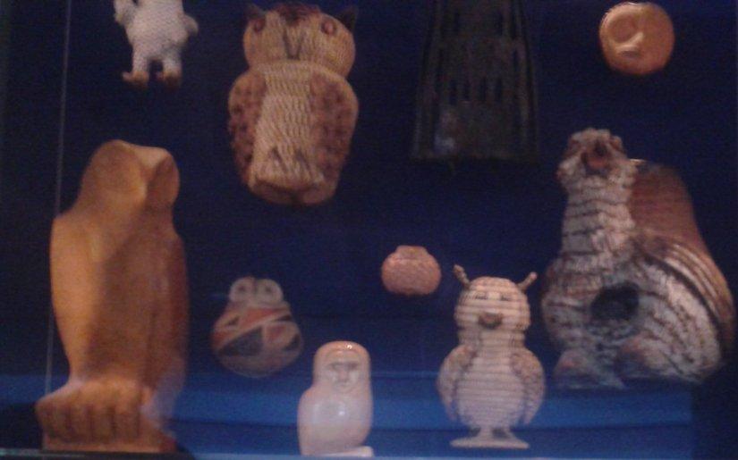 NMAI OWLS